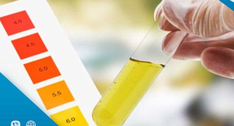 أهم 4 عوامل تؤثر على مدة بقاء الترامادول في البول والدم